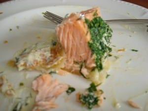 eaten-salmon-9