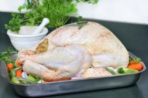 Tip Top Turkey Tips