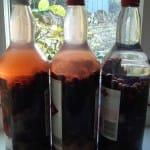 sloe-gin-bottled-1